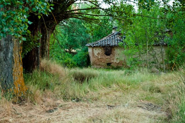 Molino del Suso (Concha Arias)
