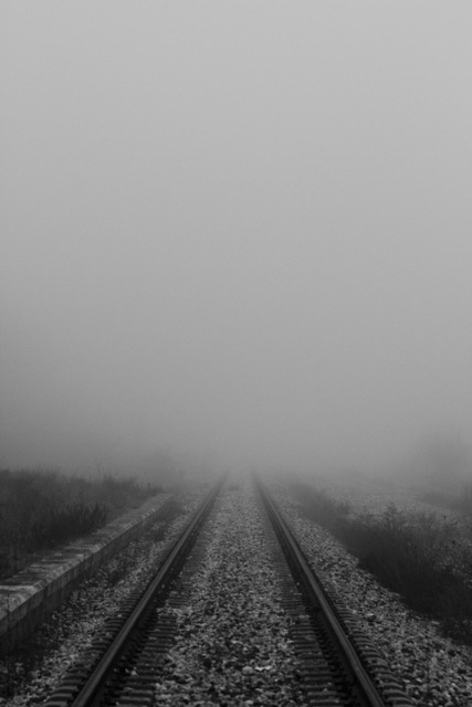 vías entre niebla