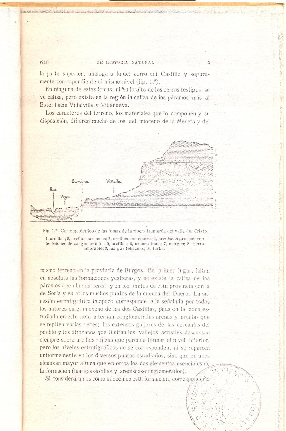 imagen de la página 5