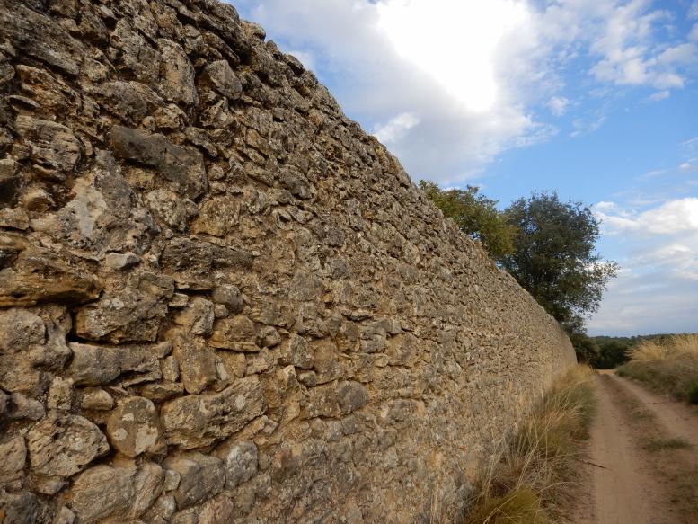 Tapia en piedra de San Pedro