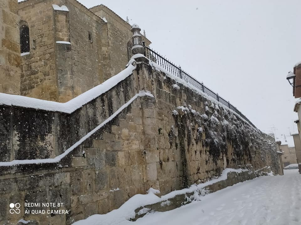 Muro que rodea la iglesia. Se aprecia la hierba del muro.